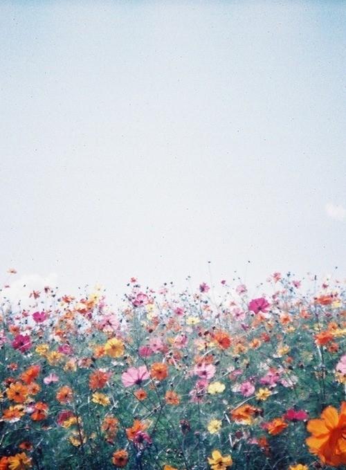 你是我心中最美的风景
