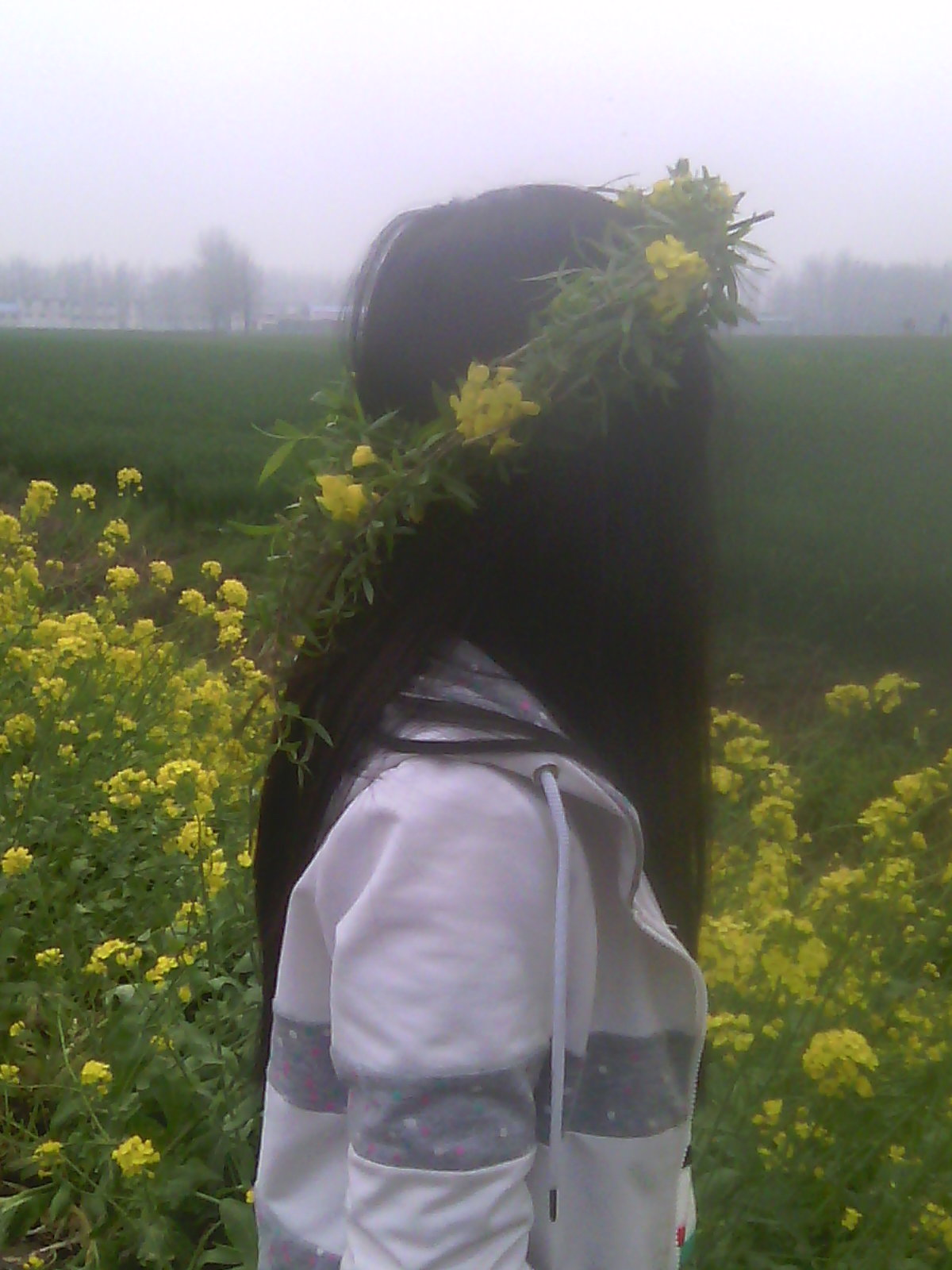 我在看孤独的风景