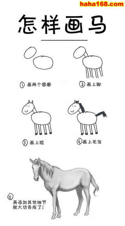 马的步骤图